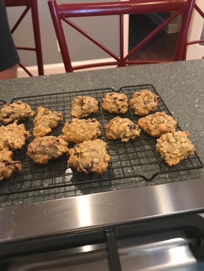 cranberrycookiecookedSandy